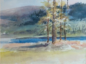 WCL - Big Bear Lake Side Shore